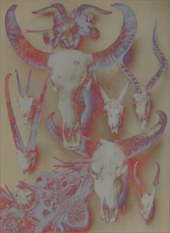 skullsolarbright
